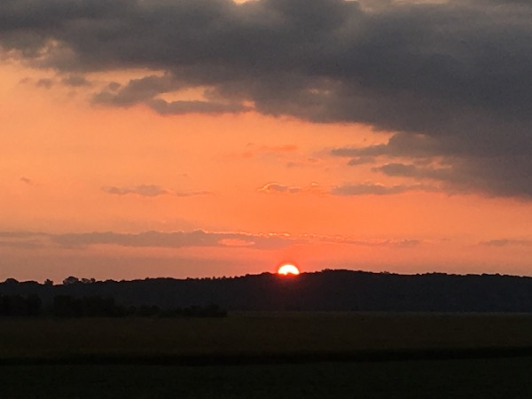 Sunset w